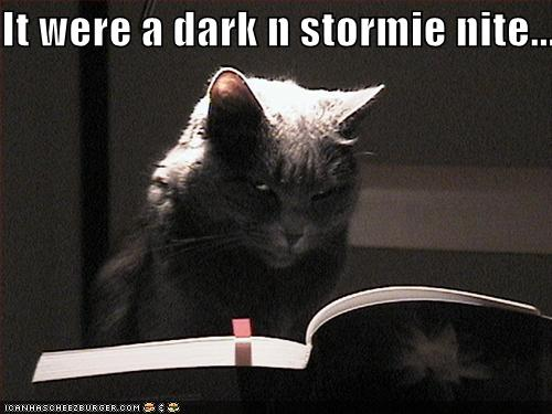 http://mightyredpen.files.wordpress.com/2007/12/funny-pictures-scary-cat.jpg
